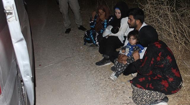 Düzensiz göçmenleri karpuz tarlasında bıraktılar