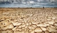 Her yıl 12 milyon hektar verimli alan çölleşiyor