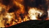 Pakistan'da 2 ayda 90 orman yangını