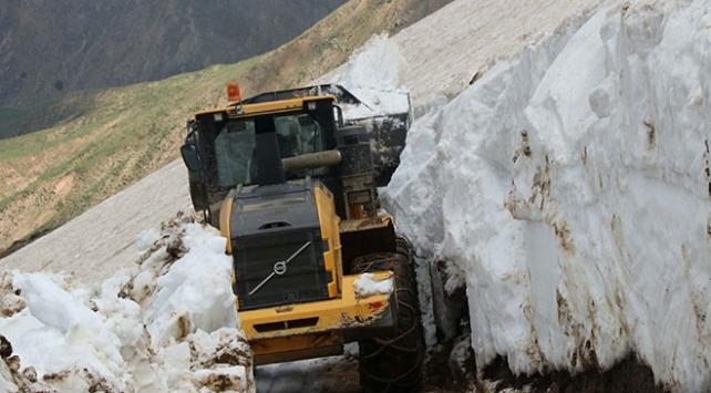 Bitliste haziran sonunda karla mücadele çalışmaları sürüyor