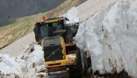 Bitlis'te haziran sonunda karla mücadele çalışmaları sürüyor