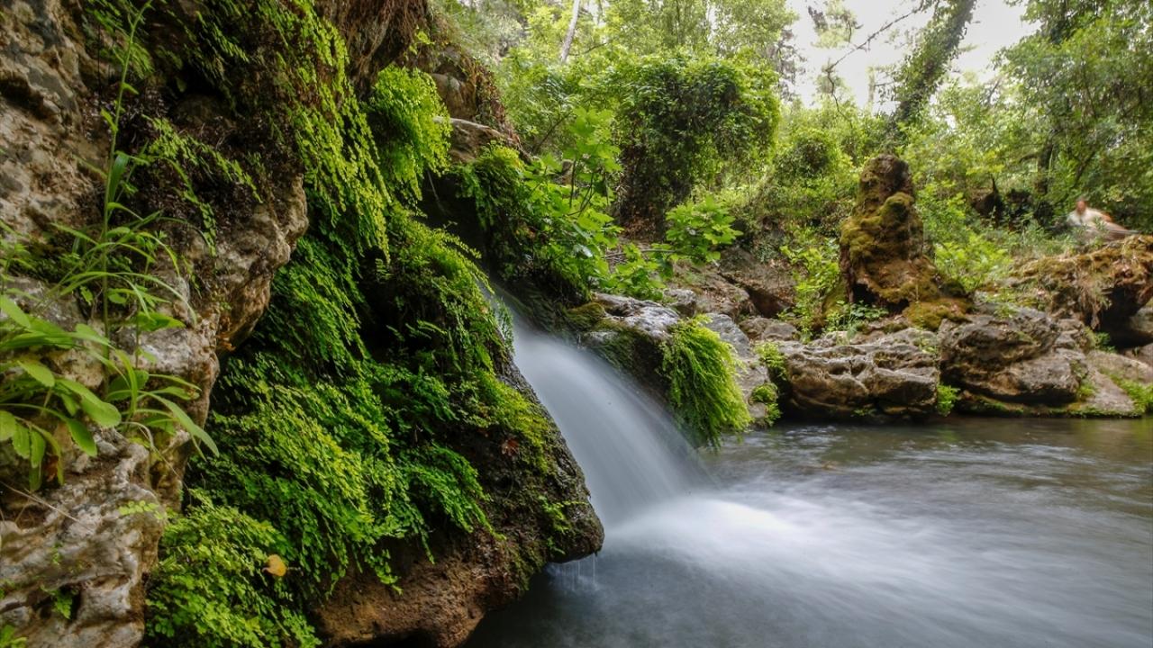 """Ormanın içindeki """"gizli cennet"""" ziyaretçilerini büyülüyor"""