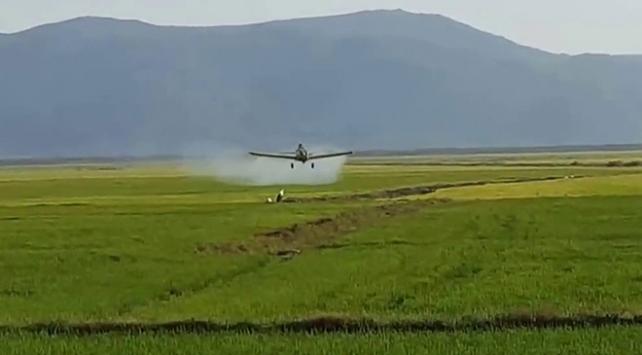 Kazakistan'da ilaçlama uçağı düştü
