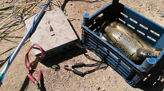 Elektroşokla balık avlayana 60 bin lira idari para cezası