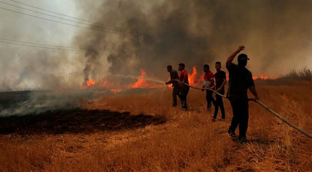 Irakta halk, tarım arazilerinde çıkan yangınlarla mücadele ediyor