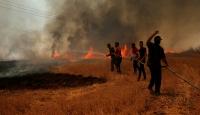 Irak'ta halk, tarım arazilerinde çıkan yangınlarla mücadele ediyor