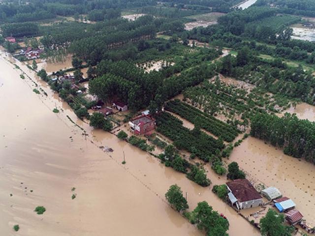 Şiddetli yağışlar birçok ilde sele neden oldu