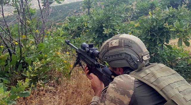 Terör örgütü PKKya Bitliste üst düzey darbe