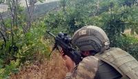 Terör örgütü PKK'ya Bitlis'te 'üst düzey' darbe