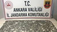 Ankara'da Selçuklu dönemine ait 3 bine yakın sikke ele geçirildi
