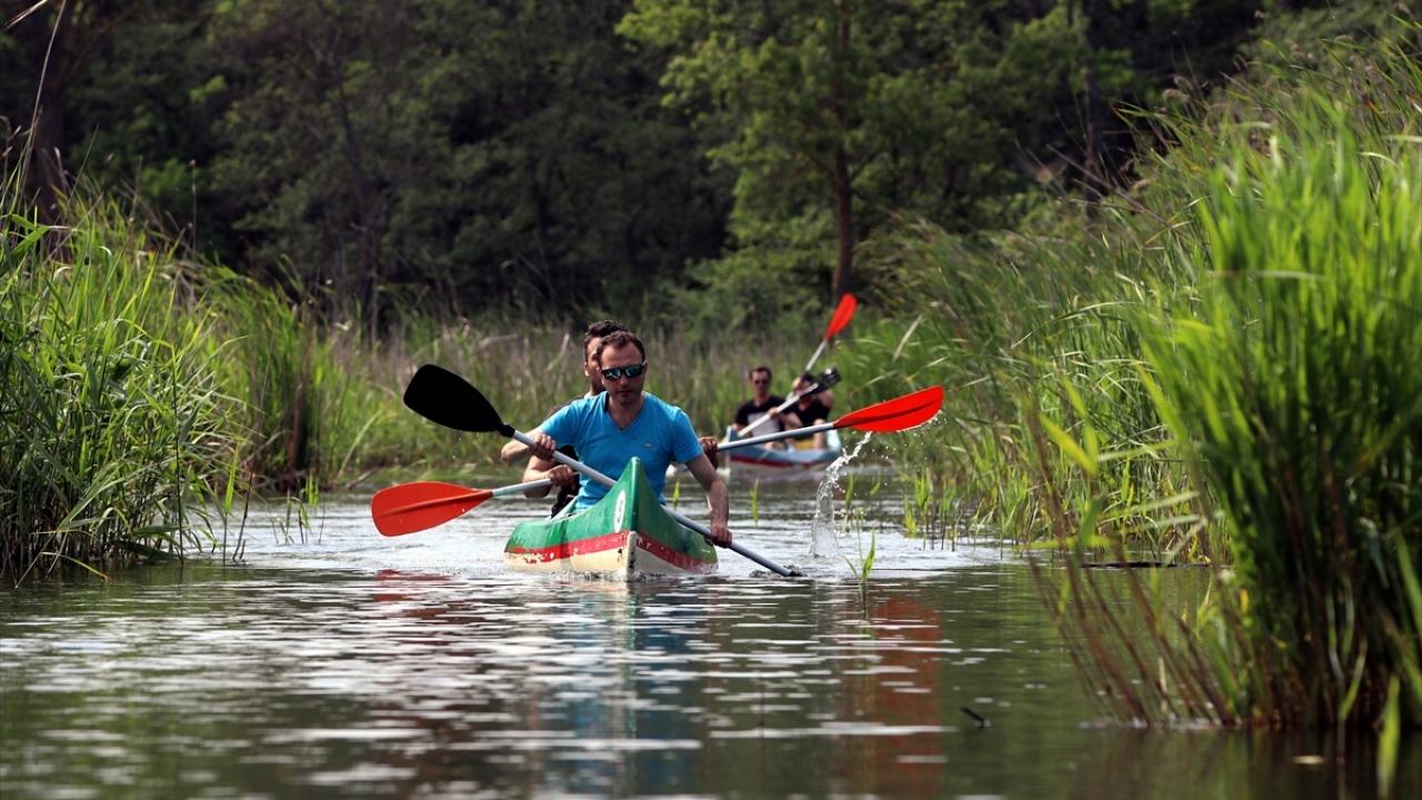 Longoz ormanlarında kano keyfi