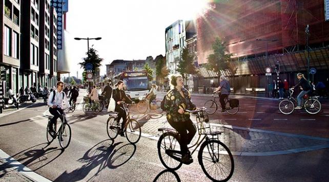 Hollandada bisiklet sürücülerinin cep telefonu kullanımı yasaklandı