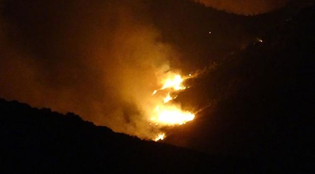 Adanadaki orman yangını yeniden başladı