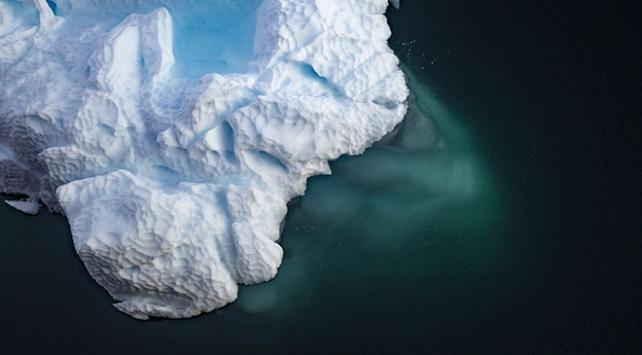 Antarktikadan toplanan örneklerden yeni bakteri keşfedildi