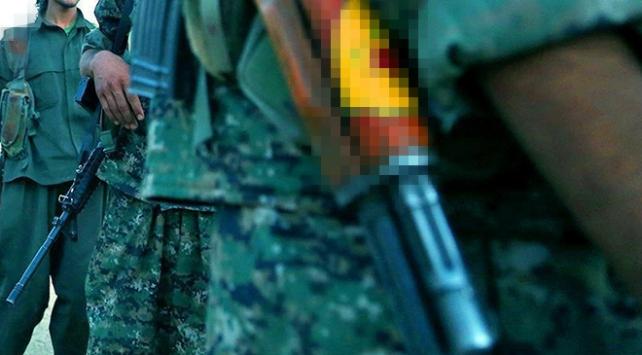 Terör örgütü PKK Irak sınırındaki turistik bölgelere zarar veriyor