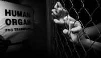 İnsanlık dışı bir pazar: Kaçak organ piyasası