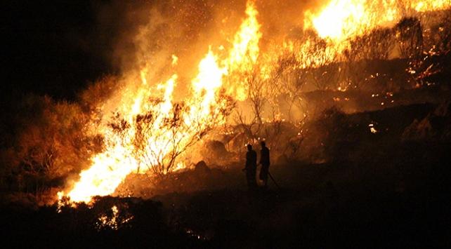 Muğlada makilik alanda yangın