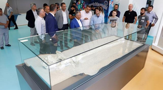 Bilim insanlarından Kayserideki 7,5 milyon yıllık fosillere ilgi