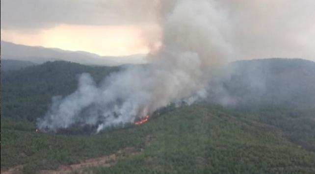 Muğlada orman yangını