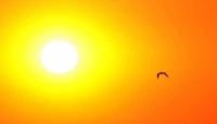 ABD'de aşırı sıcak hava uyarısı