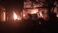 Bursa'da 3 büyükbaş hayvan yangında telef oldu