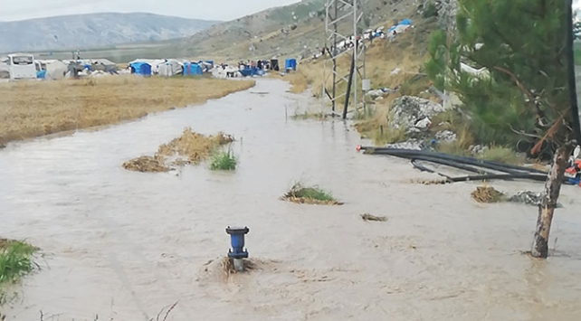 Ankarada sağanak sonucu sele kapılan 25 koyun telef oldu