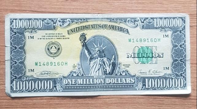 Uşakta 1 milyon dolarlık banknot ele geçirildi