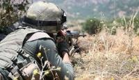 Şanlıurfa'da 2 PKK'lı terörist yakalandı