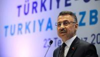 Cumhurbaşkanı Yardımcısı Oktay: Sınırlarımızın güvenliğini koruma kararlılığımız sürecek
