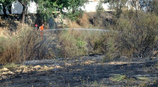 Antalyada yangın: 20 dönüm arazi zarar gördü