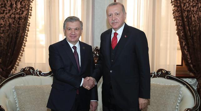 Cumhurbaşkanı Erdoğan, Özbekistan Cumhurbaşkanı ile görüştü