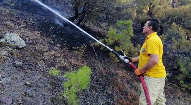 Çorumda 2 hektar ormanlık alan yandı