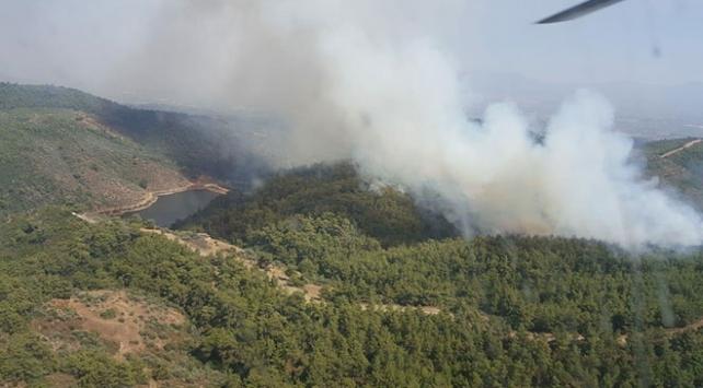İzmir Torbalıda orman yangını