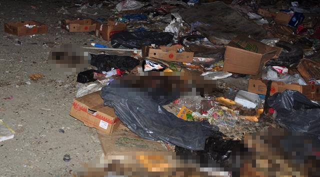 Köpek ölüleri demitaş belediyesi tarafından kullanılan
