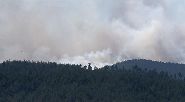 Bursadaki orman yangını kısmen kontrol altına alındı