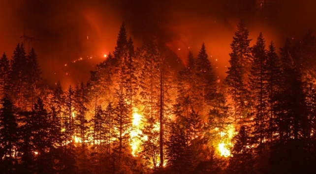 Rusya'da orman yangınları söndürülemiyor - Son Dakika Haberleri