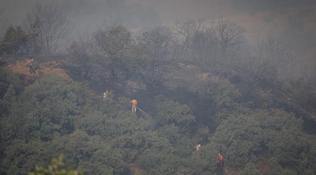 Bursadaki orman yangını kontrol altına alındı
