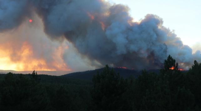 Kütahyada orman yangını