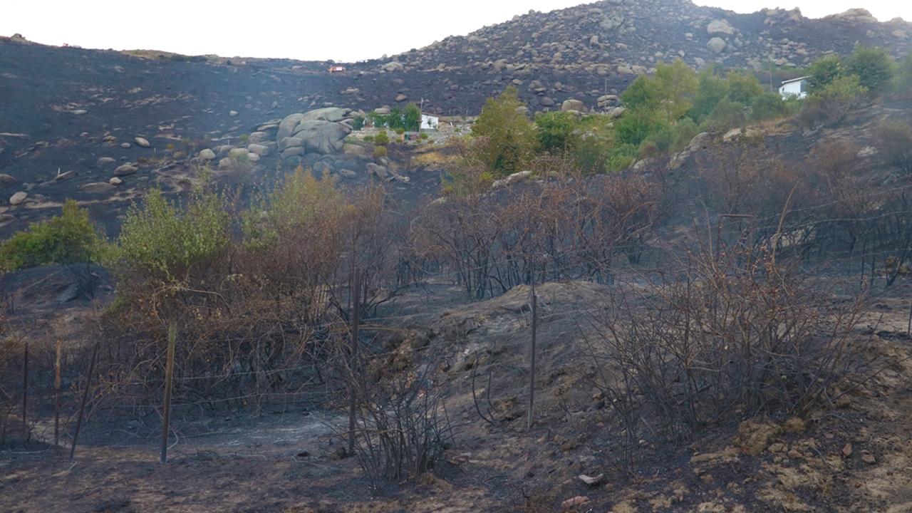 Marmara Adasındaki yangının boyutu gün ağarınca ortaya çıktı