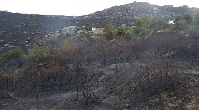 Marmara Adasındaki orman yangınında gözaltı sayısı 2 oldu