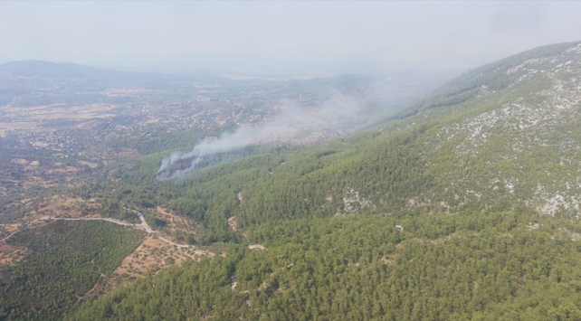 Muğlada ormanlık alanda çıkan yangın söndürüldü