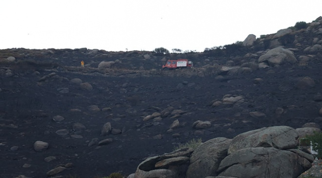 Marmara Adasındaki orman yangınında 2 kişi tutuklandı