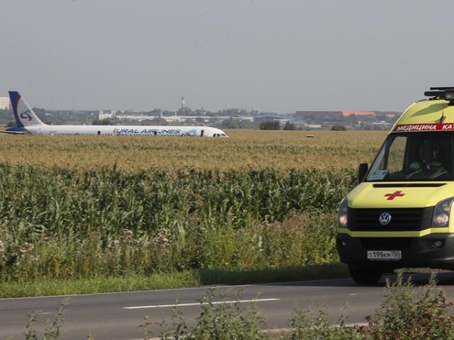 Rusyada kuş sürüsüne çarpan uçak acil iniş yaptı