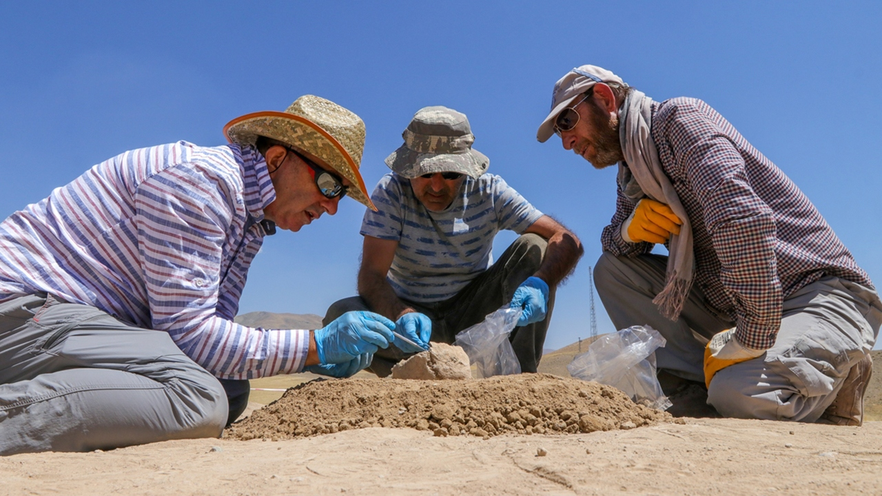Diş taşlarından 2 bin 750 yıl önceki ölümlerin nedeni belirlenecek