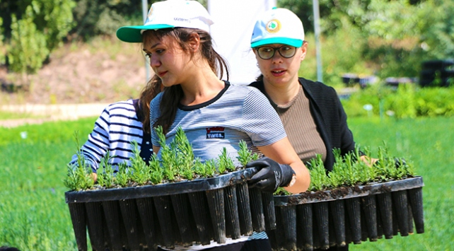 Türkiyenin yeşiline üniversiteli eller değiyor