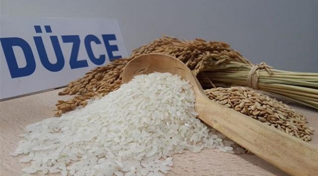 Osmanlı mutfaklarını süsleyen Konuralp pirinci tescillendi