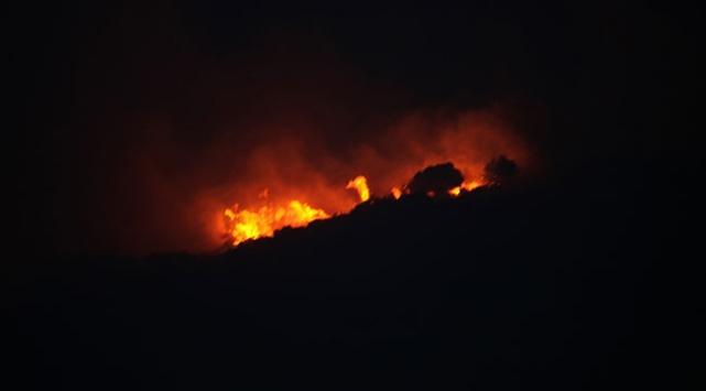 Aydında makilik alanda yangın