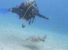 Göçük altından su altına uzanan başarı hikayesi: Ufuk Koçak