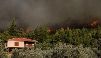 Ege'de 4 ilçede orman yangını