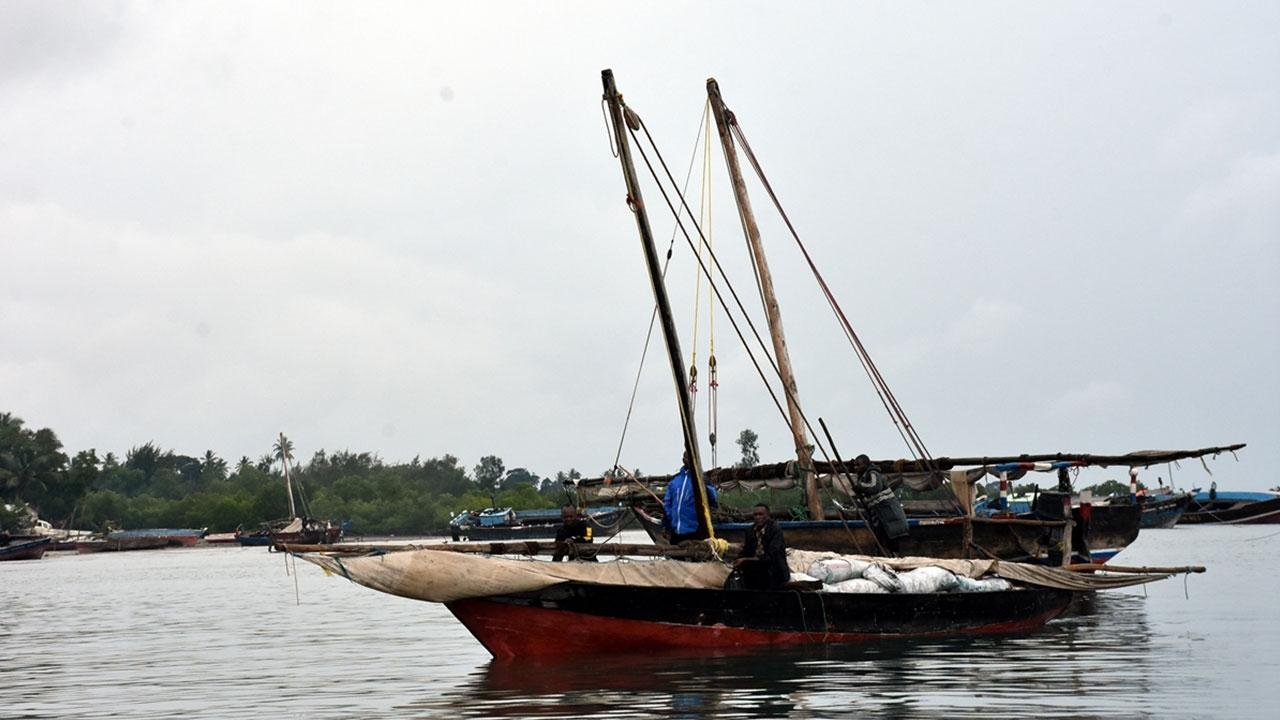 Doğa harikası kıyılarda yoksul yaşam sürenlerin adası: Zanzibar